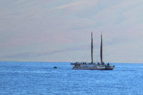 Maui welcomes Hōkūleʻa, Hikianalia